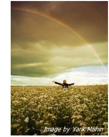 rainbow-field1